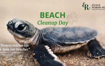 Beach Cleanup Day