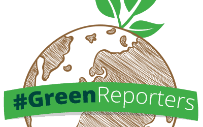 Green journalists go back to work